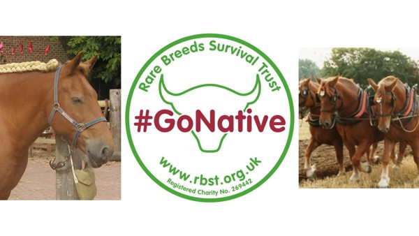 RBST AGM  - 22 October